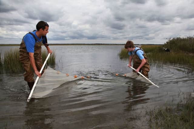 A new service learning initiative at the SWBOCES Center for Career Services in Valhalla is starting soon. Here, the Hudson River Estuary Project coordinated with the Center for the Urban River at Beczak and Sarah Lawrence College.