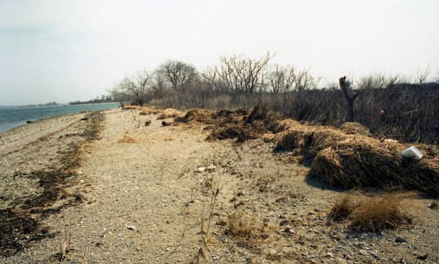 Norwalk police are attempting to use DNA to identify a man found dead on Shea Island in 1996.