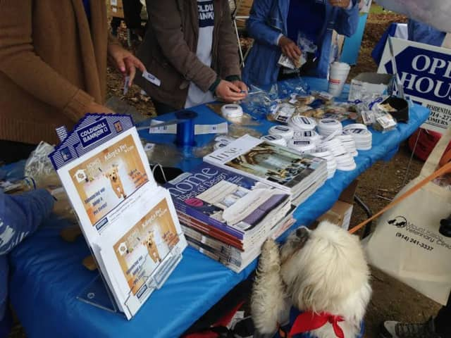 Coldwell Banker Residential Brokerage was a Gold sponsor for the Westchester SPCA Dog Walk in FDR Park in Yorktown on May 5.
