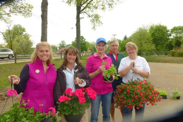 Come out to the Conservancy for Ridgewood Public Lands' Spring Plant Sale, on May 7.