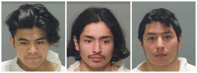 Erickson Chojoj-Oklaj, Fernando Arce, and Angel Buceta