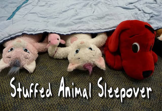The East Rutherford Library is hosting a stuffed animal sleepover Nov. 5.