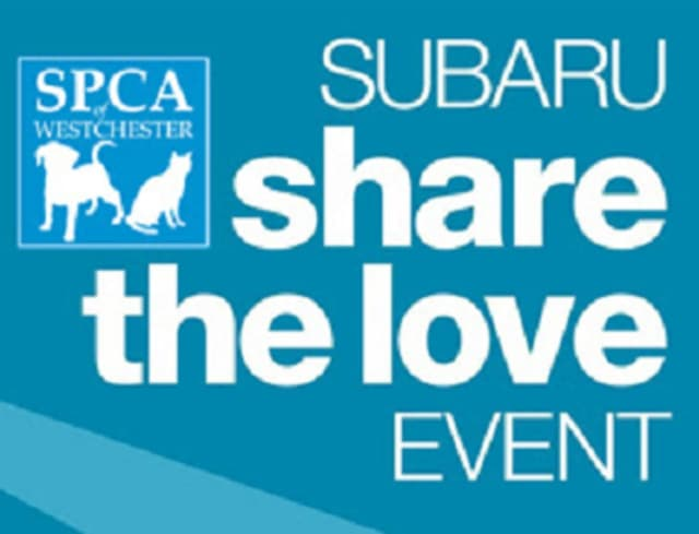 Prestige Subaru will donate $250 to SPCA Westchester for every car purchased in a six-week period.