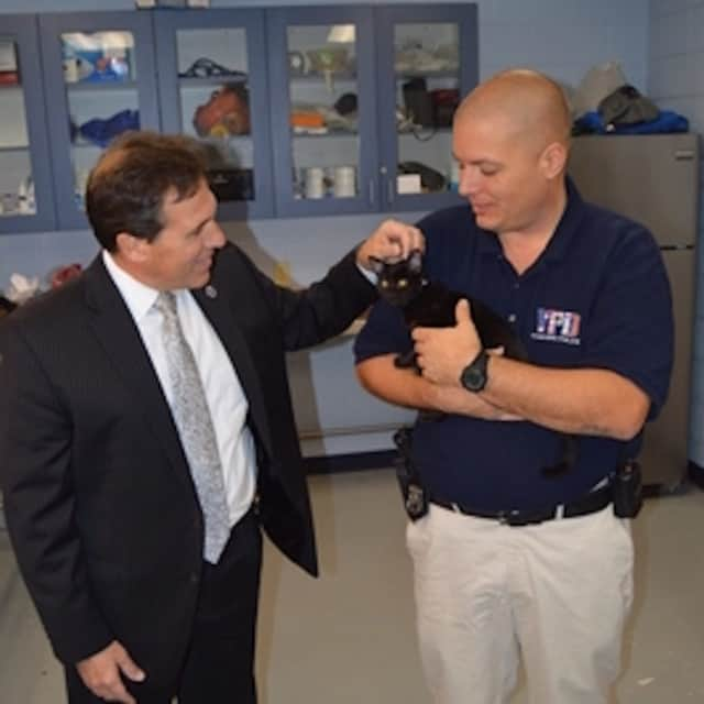 Yonkers Police Officer Wiliam Pataky shows his new rescued kitten to Police Commissioner Charles Gardner.
