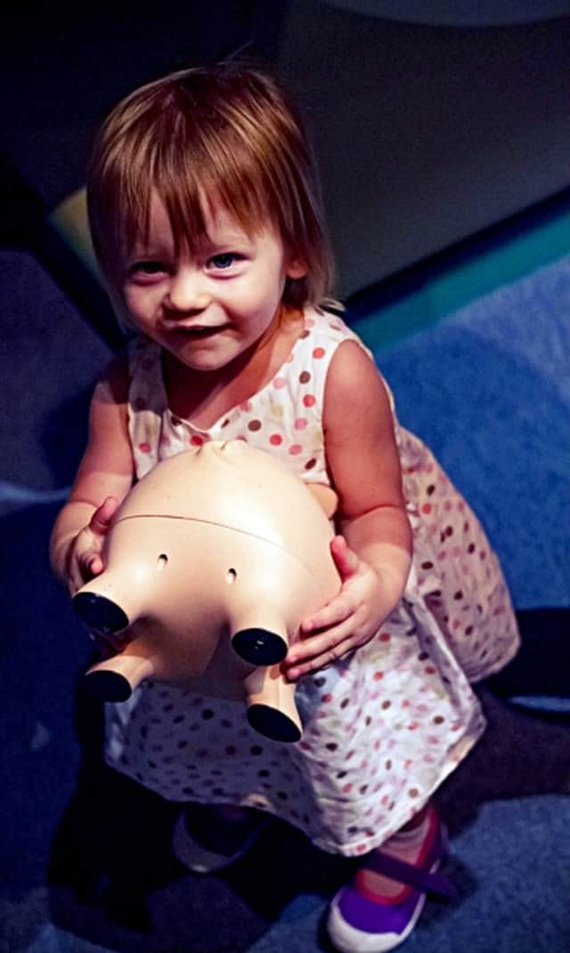 """The """"Pigs and Pennies Financial Literacy Fair"""" -- for kids of all ages -- is coming is to the Westwood library this Saturday."""