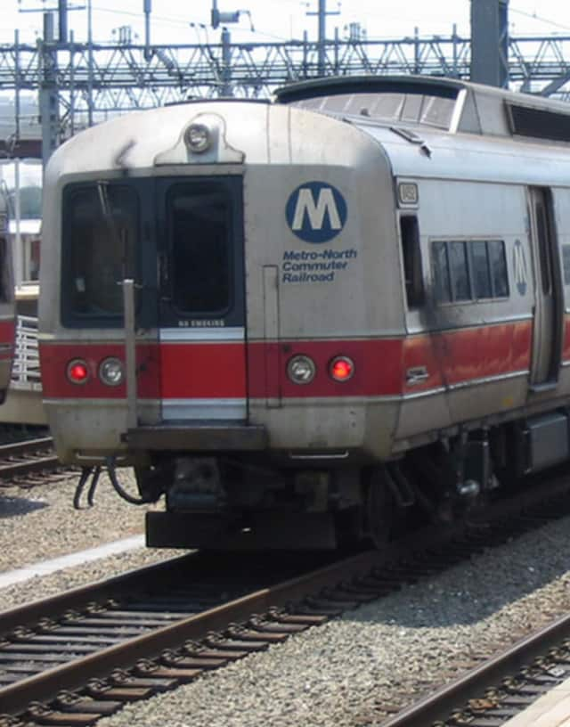 Metro-North suspended service on all its lines late Tuesday afternoon as heavy thunderstorms with damaging winds that brought down trees moved through the area.