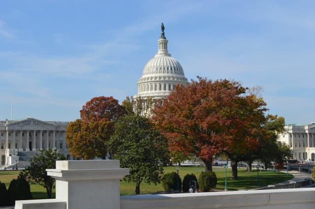 U.S Capitol Building in Washington D.C