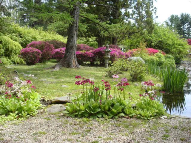 Hammond Museum and Japanese Stroll Garden in North Salem.