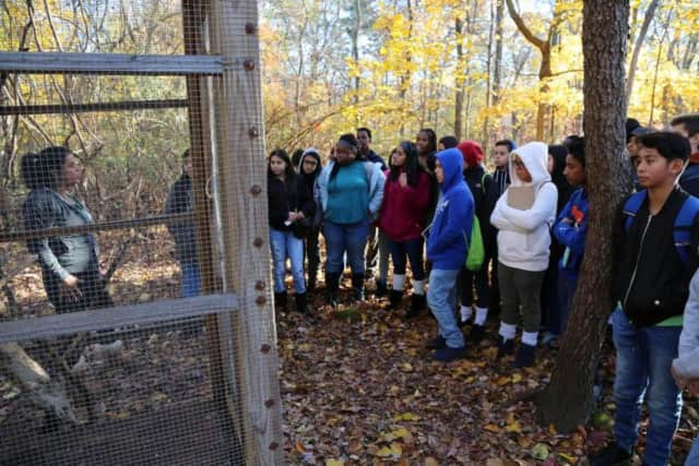 New Rochelle elementary students are being taught lessons at the wildlife preserve.