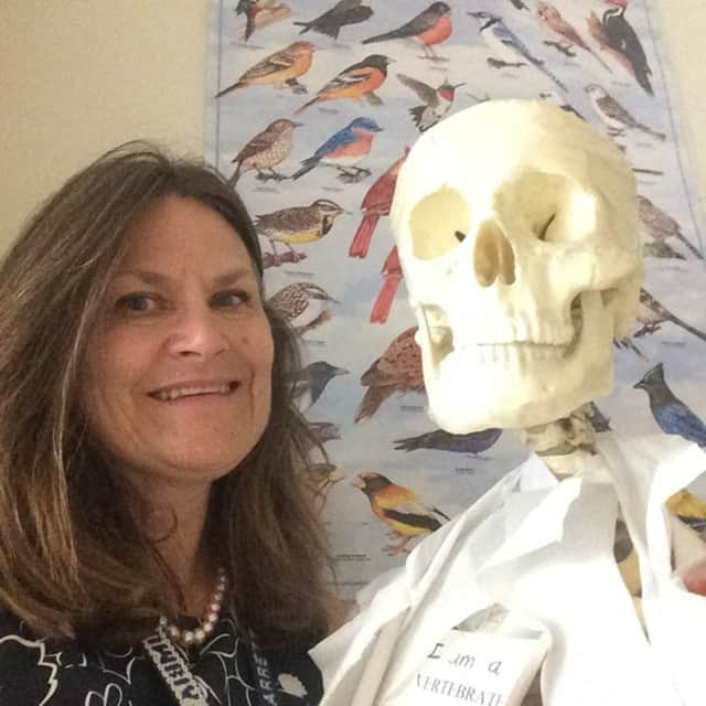 Science teacher Elizabeth Zahn has been selected to receive the 2016 Anton Banko Award for teaching excellence.