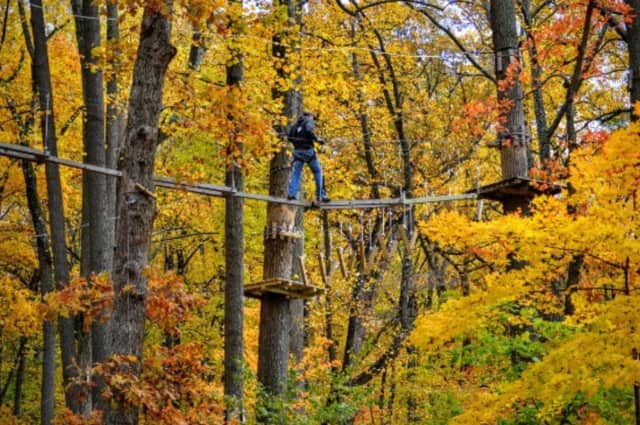 Enjoy the sights of fall from above thanks to seasonal climbing at the Adventure Park at the Discovery Museum.