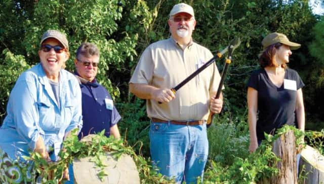 The Lewisboro Land Trust is helping to clean up a trail in Vista.