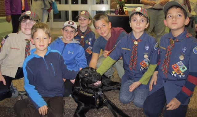 Ossining Cub Scout Pack 83 with Daisy, an arson detection dog.