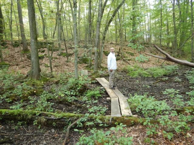 Shaun McCoshum, Westchester Land Trust's Preserve Manager & Educator, tests out the new bog bridges at the William K. Love Preserve in South Salem.