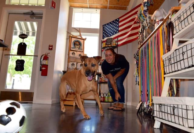 Dana Peterson plays with her dog Dexter at Dexter's Dog Boutique.