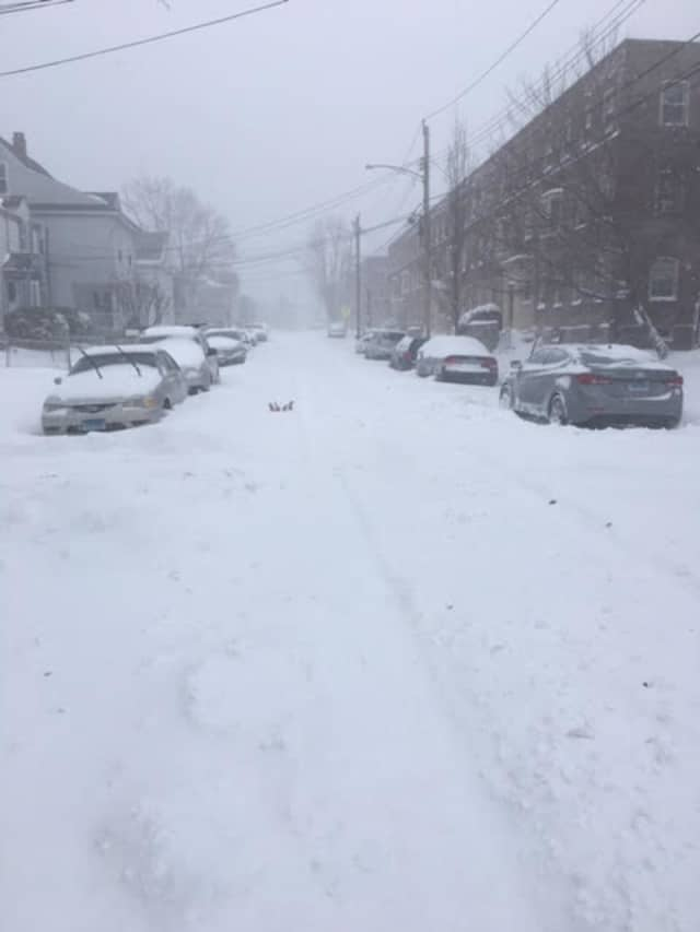 Courtney Lewis snapped this snowy photo on Nash Lane in the Black Rock section of Bridgeport.