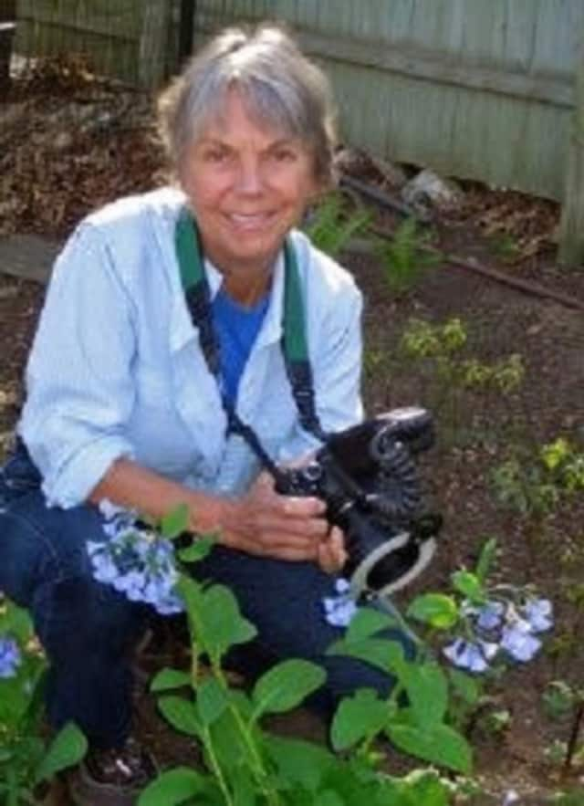 The walk will be led by Carol Gracie, an author, photographer and naturalist.
