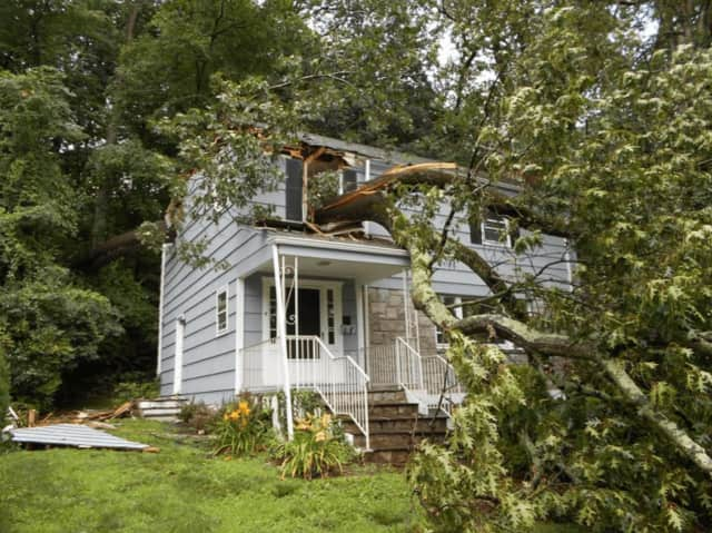 A tree crashed through a Gorham Court roof in Scarsdale.
