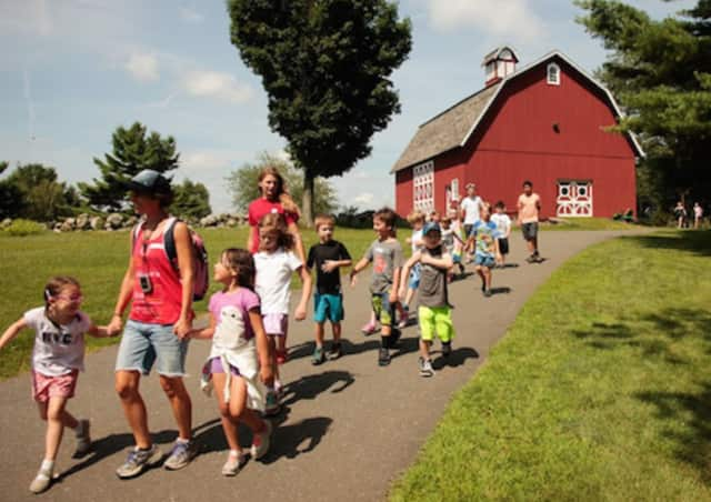 Registration is open for summer camp programs at Ambler Farm in Wilton.