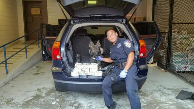 Westchester County Police Officer Gutierrez and Jax made their third major drug bust of the year on the Hutchinson River Parkway in New Rochelle on Thursday.