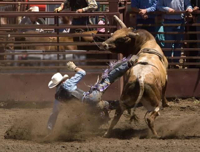 A professional rodeo is coming to Tappan on Saturday and Sunday to benefit Venture Foundation and Mason and Shriners.