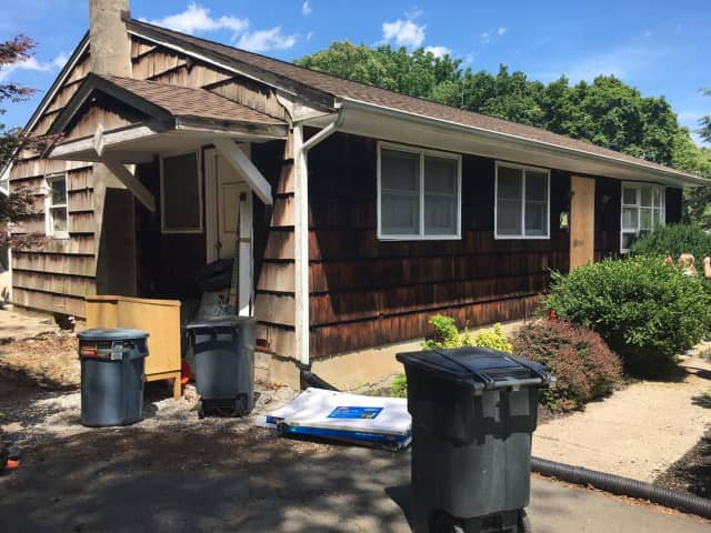 Five dead dogs and 21 live ones were found living in filth in a Stony Point home.