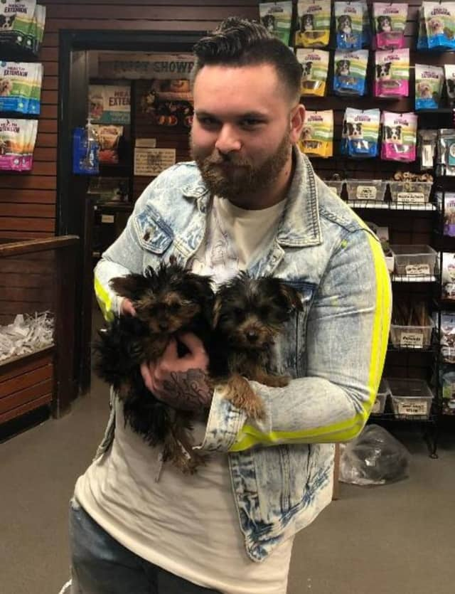 A man is wanted for allegedly using stolen information to purchase puppies in Huntington Station.