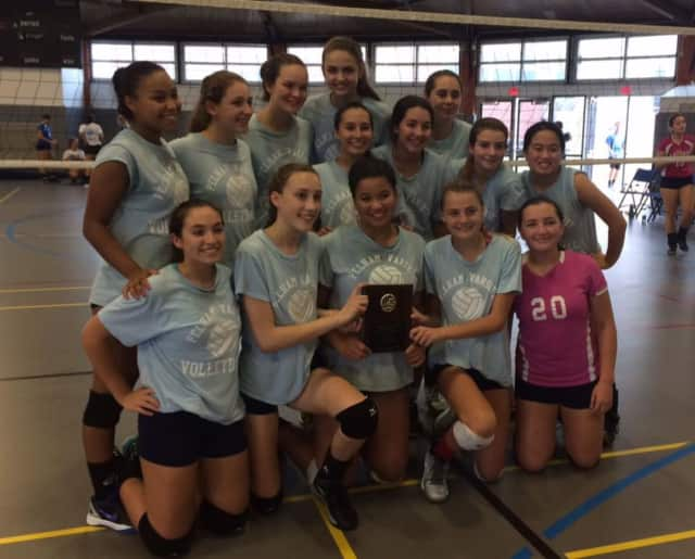 The Pelham Memorial High School volleyball team are silver bracket champions.