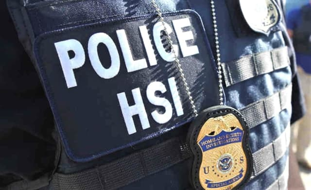 U.S. Immigration and Customs Enforcement (ICE) Homeland Security Investigations (HIS)