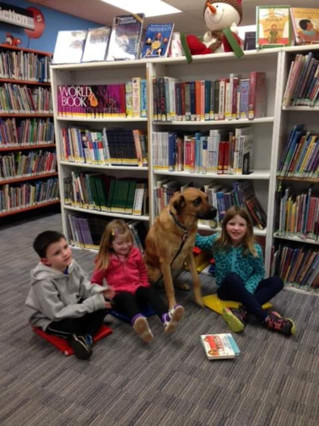 Children can read to Rocky, a therapy dog, at the West Milford Township Library.
