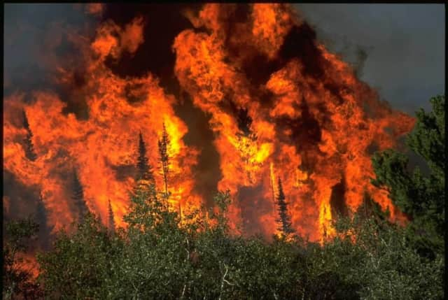 The New York State DEC is warning that this spring could see increased risk of wildfires.