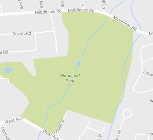 Two students were injured when a tree fell on them in Woodland Park, according to the Darien Times.