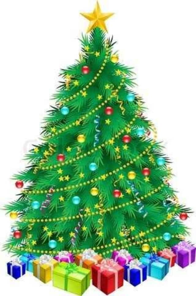 """A """"Christmas Angel"""" purchased nearly 40 trees from Sterling House Community Center to give to local residents."""
