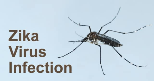 The New Jersey Department of Health offers Zika Virus information.