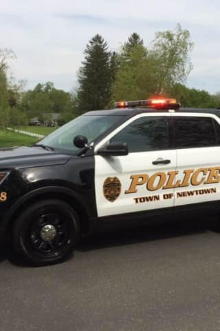 Police On Hunt For Vehicle Involved In Newtown Hit-Run