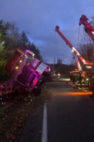 Tractor-Trailer Hauling Liquid Eggs Overturns, Spilling Contents On Side Of Roadway