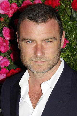 'Ray Donovan' Star Liev Schreiber Faces Harassment Charge In Nyack