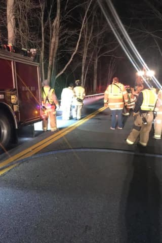 Driver Hits Horse On Roadway In Westchester