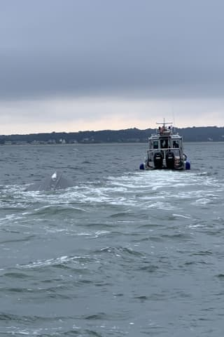 Five Rescued From Capsized Boat In Long Island Sound