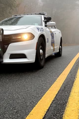 Speeding Driver Captured After Ramming Civilian Vehicle, Palisades Interstate Parkway PD Car