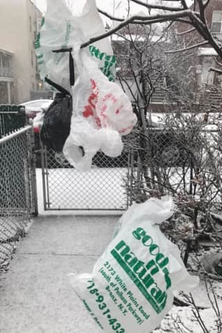 Here's When Ban On Single-Use Plastic Bags Takes Effect In NY