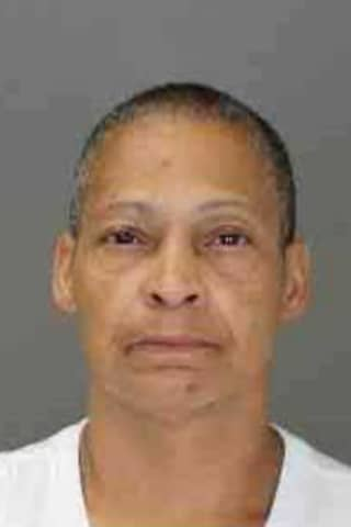 Seen Her? Police Ask Public's Help In Search For Rockland Suspect