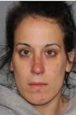 Seen Her? Alert Issued For Woman Wanted In Northern Westchester