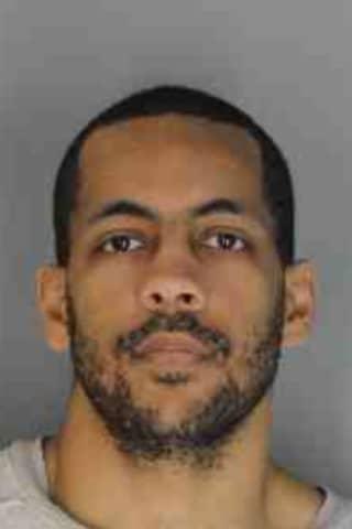 Serial Burglar Admits To Rye Brook Break-Ins, DA Says