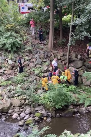 Stranded Man Rescued Days After Fall From Bridge Rushed To Westchester Medical Center