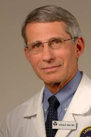COVID-19: Sports May Not Return This Year, Fauci Says