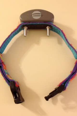No More Shock Collars - National Pet Supply Chain Bans Sale