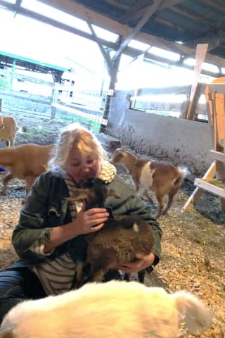 Stratford Native Lisa Miskella Gives Farm Animals A Home At Sanctuary
