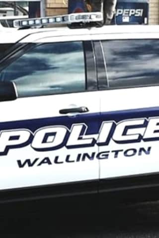Wallington PD: Car Burglars Nabbed In The Act