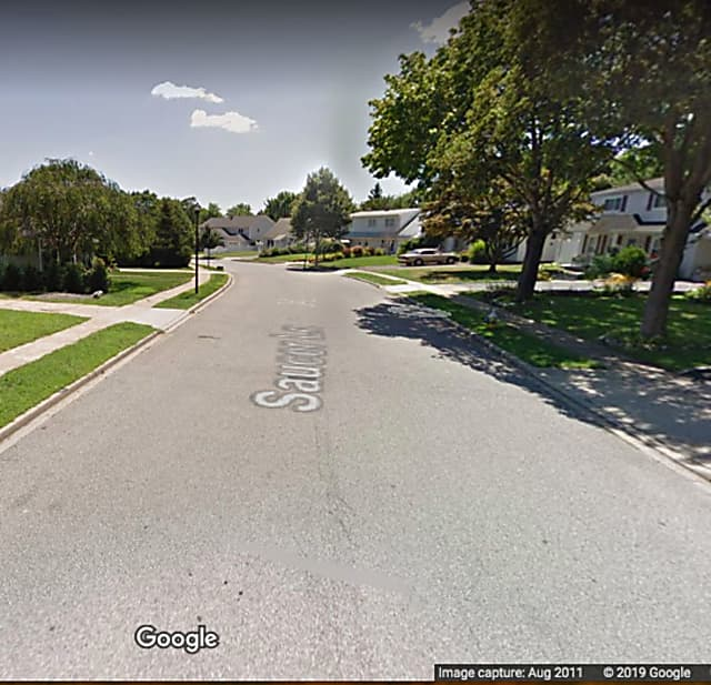 Woman Steals Dog From Front Sidewalk Of Levittown Home